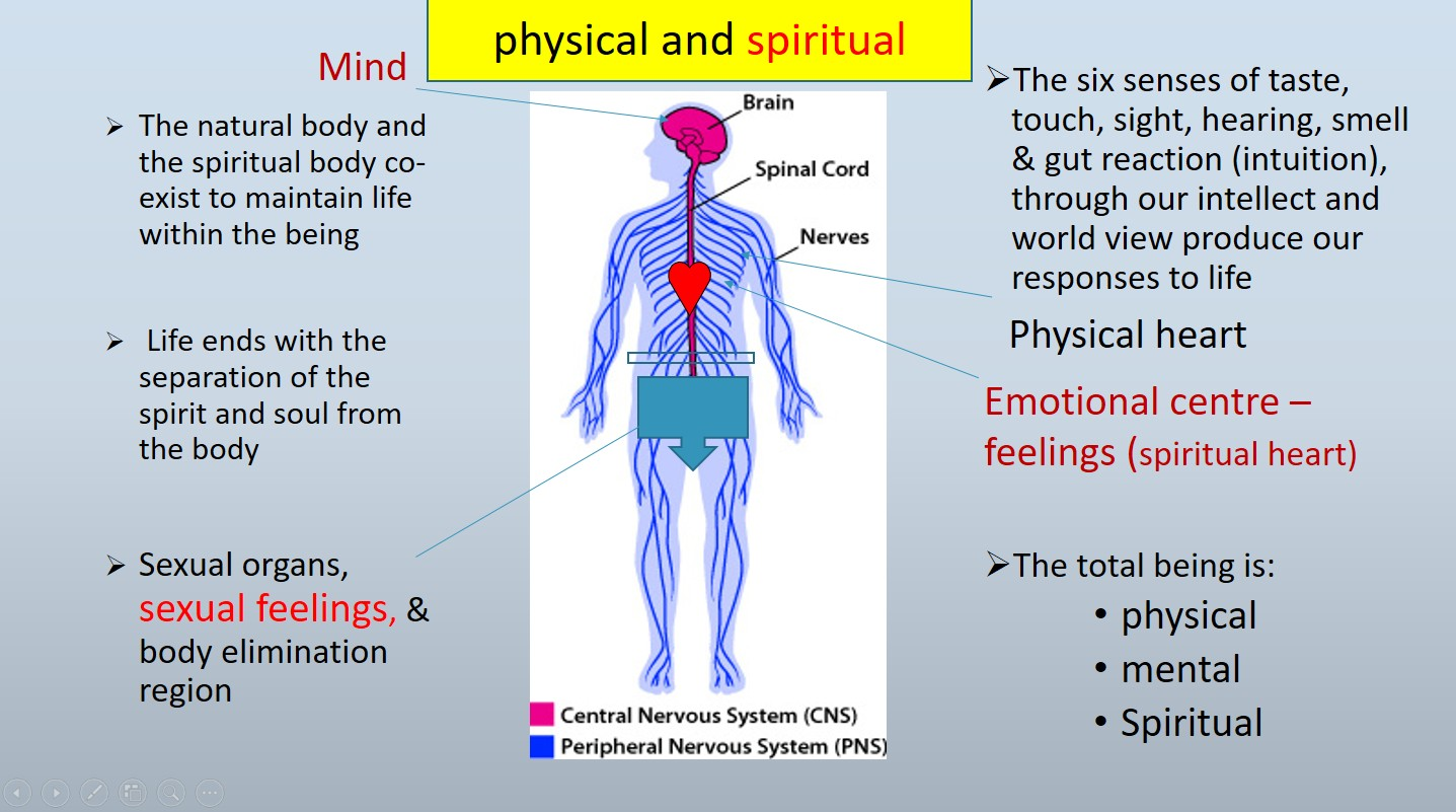 the mind and the physical body Both mind and body were causally efficacious within their own spheres - physical events cause other physical events to occur and mental events cause other mental events to occur but both kinds of events were aspects of the same substance - god.